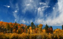 jackson hole wyoming wallpaper