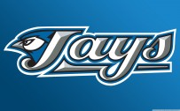 blue jays wallpaper