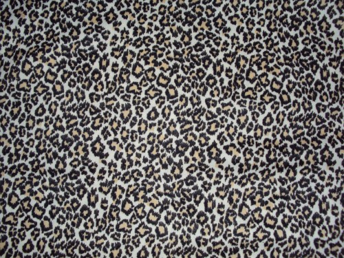 leopard bedroom wallpaper