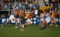 luke hodge wallpaper